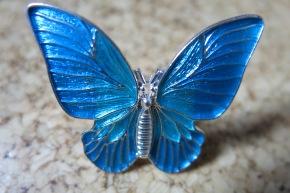 Schmetterlinge auf Reisen –Wanderfalter